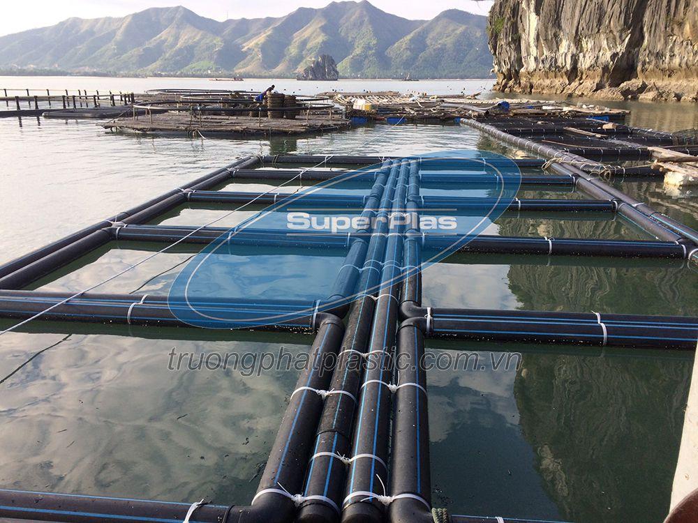 Hình ảnh ống nhựa HDPE làm lồng bè SuperPlas tại Quảng Ninh