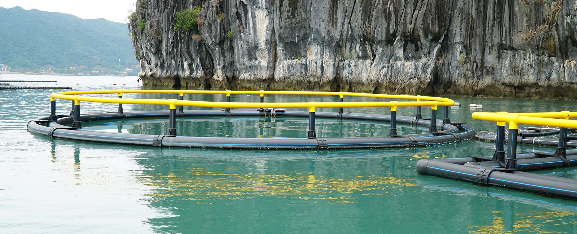 Lồng nhựa HDPE nuôi cá, nuôi trồng thủy sản hiện nay được ứng dụng rất rộng rãi tại các tỉnh ven biển